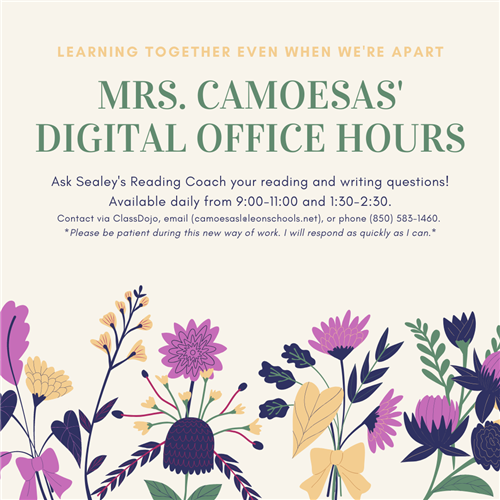 Mrs. Camoesas is available from 9-11 and 1:30-2:30.