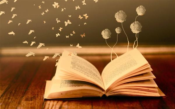 Book/Butterfly/Flowers
