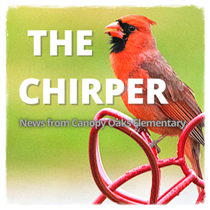 Newsletter - The Chirper